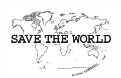 save the world essay